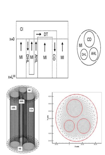 A 3-Dimentional Framework for Studying the Effects of Structural and Physical Properties of the Renal Outer Medulla on Urine Concentrating Mechanism